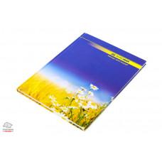 Книга канцелярская BuroMax А4 96 листов твердый переплет офсет в линию Арт. ВМ.2401
