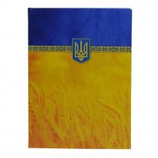 Папка адресная Economix Символика Украины А4+ бумвинил сине-желтый Арт. Е30901-05